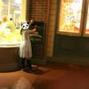 【TDL】ディズニーパークでお手紙投函!!夢の国から素敵なお手紙が!? ~2017年6月Disney旅行記【62】