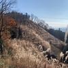 戸倉三山縦走をやってきました