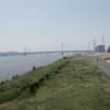 5月21日 荒川東岸から小台まで猫さま歩き とその情景