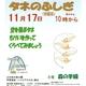 【地域情報】11/17(日)江古田の森の観察会 タネのふしぎ