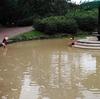 大雨の後の大泉緑地公園 その2
