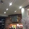初心者のための横浜駅から成田空港行くのに、安くて、早く行く方法