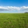 就職する会社で年収は決まる。隣の芝生は青いという事実