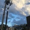 武庫川ペースラン 去年を振り返りつつ