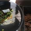 ベランダに小さなビオトープ作り!メダカの飼育を再開しました!!