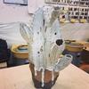サボテン鉢と虫筒鉢の窯出し、羊鉢の造形