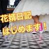 花婿ブログ【体験談】紹介します!
