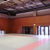 リオ オリンピック柔道を見て。柔術は柔道に柔道は柔術となる。