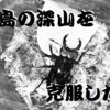 御蔵島産ミクラミヤマ、5回目のマット交換