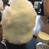 大蔵餅でカキ氷