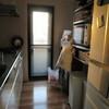 カインズホームが福岡に出来るんだって&無印でキッチン収納を改善?