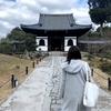 京都で御朱印集め 高台寺