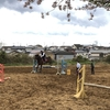 第二週目試乗会【第二、三回乗馬体験会】