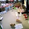 2018年12月30日 お昼12時頃 お泊り犬ライブ画像(アニメーション)
