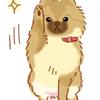 【犬マンガ】可愛さに…負けた…