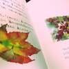 【小学1年生】 研究職ママが選んだ読み聞かせ「生と死」の絵本