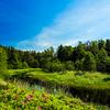 エストニアへ:ラヘマー国立公園をサイクリング