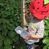 巾着田キャンプ(日高市)無料・予約なしで川遊びできちゃう!子連れキャンプ情報