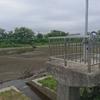 新城川冠水対策要望を受け現地調査