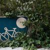 みどりと月とスポーツバイク
