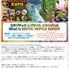 9月16日(月:祭日)エキゾチックレプタイルエキスポ共同出展者募集