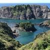 岐阜県観光大使の出張~奇跡の土地・伊豆へ行ってきました。南国だ。~