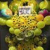 ハコムスに「なる」ということ〜ハコイリ♡ムスメ結成三周年記念LIVE~せーの、ではじめよう!~