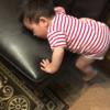 1歳児の頻繁なソファよじのぼりに伴う模様替えについて