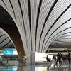 【世界最大空港ターミナル】ザハ・ハディド氏がデザインした北京大興国際空港(北京大兴国际机场)