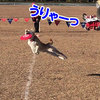 NDA New Year Cup 浜名湖大会 3日目