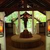 サムイ島のリゾート「ナパサイ」でゆったりホリデー その2 ホテルのレストランで昼食を!