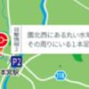 福島コードF-9 07本宮市・大玉村 編 目撃情報2