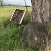 万葉歌碑を訪ねて(その139)―奈良県橿原市別所町の別所池―