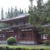 【ハワイ観光】オアフ島・カネオヘの平等院テンプルを観光!