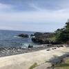 都内から日帰りで行ける伊豆海洋公園(IOP)が最高のダイビングスポットだった