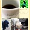 コーヒー飲みながら〜の♪引きこもり?