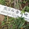 琴石山でマジックアワー