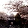 名城「和歌山城の見どころ」決定版!! パート1「お花見(桜と紅葉)の歩き方」ご紹介いたします【観光案内】