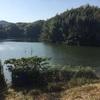 『大代谷池』静岡県掛川野池群完全攻略マップ