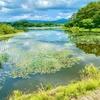 藤枝溜池(芦野湖)(青森県五所川原)