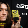 "BOSS SUPER OVER Drive ""SD-1"" Sound Check Video for Stratocaster"