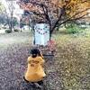 Miho Photo Studio写真撮影会2017秋@祖師谷公園。