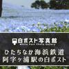 ひたちなか海浜鉄道阿字ヶ浦駅の白ポスト(ネモフィラつき)