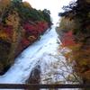 絶景・秋の日光 紅葉 ハイキング! 湯滝~戦場ヶ原~竜頭の滝 終点の茶屋でお雑煮とお団子を!