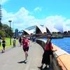 オーストラリア ハード1週間女子旅行6日目~シドニー①~「ロイヤル植物園&オペラハウス&ハーバーブリッジ」