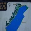 浜ちゃん日記    リスが直近で観られる佐鳴湖公園